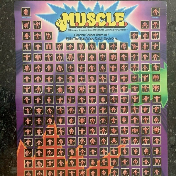 MUSCLE POSTER FOR SALE
